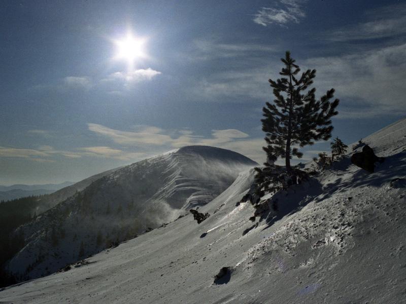 Фотогалерея Драгобрату
